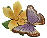 Franklin menthe c1986 Papillons du monde Australian bec Papillon FP85 F396–sculpture en porcelaine