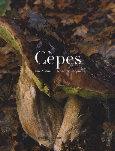 Cèpes