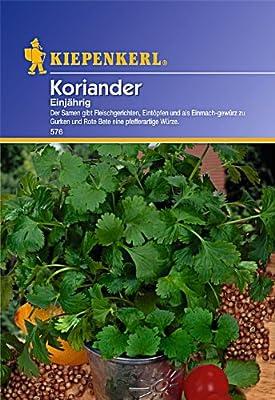 Koriander einjährig von Kiepenkerl auf Du und dein Garten