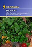 Sperli Gemüsesamen Koriander einjährig, grün