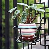 ZHANWEI Pflanzentreppe Fensterrahmen Blumenständer Eisen Leitplanke hängende Töpfe Regal / Pflanzenständer Balkon Einbauschrank (2 Stück) Blumenständer ( Farbe : C )