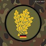 Patch/Fuerza De Parche–Cazadores del Ejército Alemán Alemania hojas de roble Militar Escudo nadadores # 12463