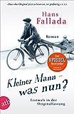 'Kleiner Mann - was nun?: Roman....' von 'Hans Fallada'