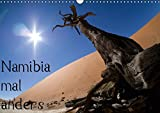 Namibia mal anders (Wandkalender 2015 DIN A3 quer): Namibia mal anders - ohne große Tiere (Monatskalender, 14 Seiten)