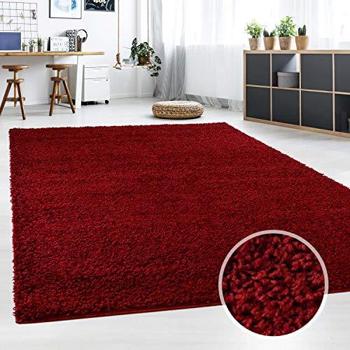 haggy Teppich fürs Wohnzimmer Modern & Flauschig | Läufer für Schlafzimmer, Esszimmer, Flur und Kinderzimmer | Langflor Carpet rot 080x150 cm ()