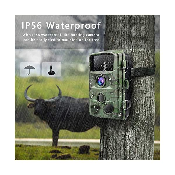 """TOGUARD Trail Game Camera 14MP 1080P Infrared Night Vision Hunting Camera Motion Activated Wild Hunting Cam 120° Detection 0.3s Trigger Speed 2.4"""" LCD Display IP56 Waterproof"""