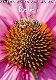 Bienenkalender : Bienen für das ganze Jahr