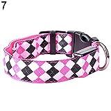 ALCYONEUS Verstellbar LED Nylon Hundehalsband Nachtzeit Sicherheit Leuchtend Kragen (S, rosa / pink)