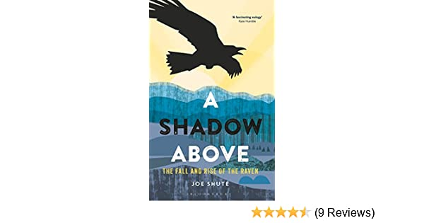 A shadow above the fall and rise of the raven ebook joe shute a shadow above the fall and rise of the raven ebook joe shute amazon kindle store fandeluxe Images