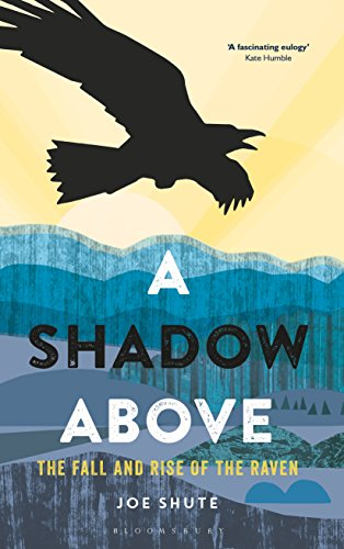 A shadow above the fall and rise of the raven ebook joe shute a shadow above the fall and rise of the raven by shute joe fandeluxe Images