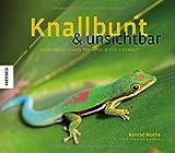 Knallbunt und unsichtbar: Farbenpracht und Tarnung in der Tierwelt