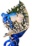 Ramo de rosas naturales a domicilio con una rosa azul y una rosa natural tatuada en el petalo con el mensaje, frase, dibujo e incluso fotografia que quieras. Son rosas de alta calidad y garantia.