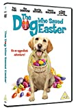 The Dog Who Saved Easter [DVD]