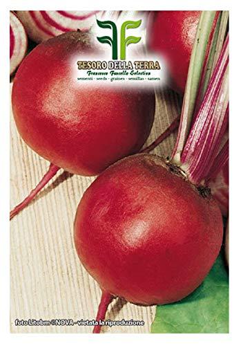 350 aprox – Samen Garten Rübensamen Chioggia – Beta Vulgaris In Originalverpackung Made in Italy – Rote Bete