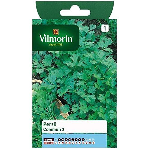 vilmorin-sachet-graines-persil-commun-2