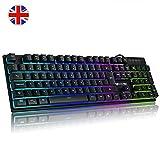 Luibor Gaming Keyboard,Rainbow LED Backlight Mechanical Feeling USB Wired Gaming Keyboard,19 Keys Anti-slipping