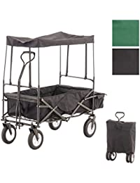 CLP Carrito plegable RUDI, carro de transporte con neumáticos anchos, completo con tejado, bolsa trasera y bolsa de transporte negro