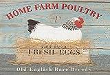 Schatzmix Home Farm Poultry Eggs Hühner blechschild