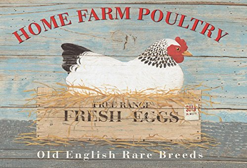 (Schatzmix Home Farm Poultry Eggs Hühner blechschild)