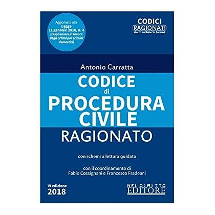 Codice Di Procedura Civile Ragionato
