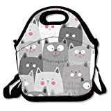Gray White Cats Ziplock Lunch Tote Bag Portable Handbag Lunch Box Waterproof Insulated Food Container for Boys&Girls School Picnic Office Travel Outdoor