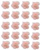 Hand® Pfirsich Rosa ziemlich glänzend Mesh und Wulst