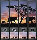 4er Set Ordnerrücken für breite Ordner Elefant Afrika Aufkleber Etiketten Deko 425