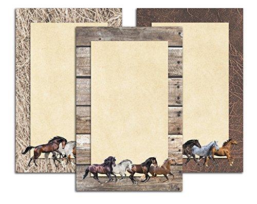 Running Horses Notizbücher in voller Farbe-3Pack-Equestrian Stationäre Geschenk-14x 21,6cm Schreibblock (Pferd Stationär)
