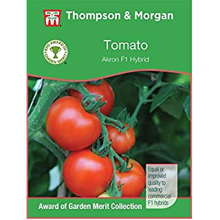 Thompson & Morgan - Vegetable - Tomato Akron F1 Hybrid - 8 Seeds