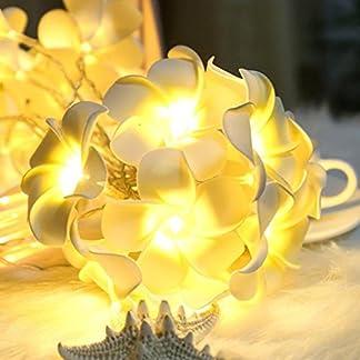 Solar-lichterketten-gaddrt-Lamp-Solarhngelampe-im-Freien-mit-integriertem-Sonnenkollektor-und-LED-fr-die-Beleuchtung