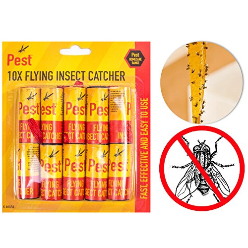 10Stück Sticky Fliegenfalle | die ultimative Flying Insekten Catcher Tape (Ultimative Restaurant-bereich)