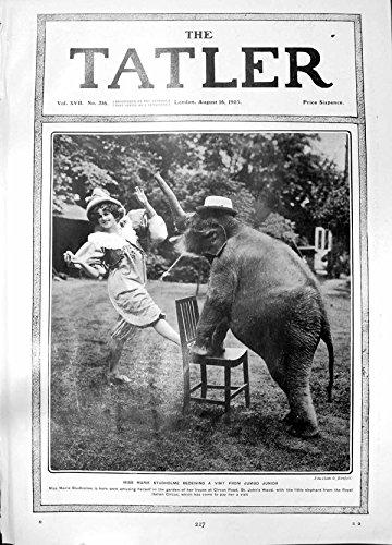 Antiker Druck von Marie Studholme Besuchs-Riesigen JuniorElefanten 1905 Empfangend