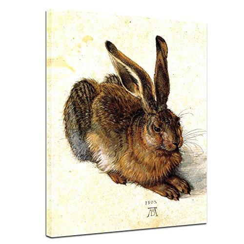 Bilderdepot24 Kunstdruck - Alte Meister - Albrecht Dürer - Feldhase - 30x40cm Einteilig - Leinwandbilder - Bilder als Leinwanddruck - Bild auf Leinwand - Wandbild