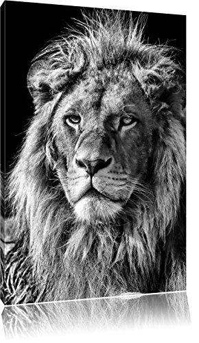 Preisvergleich Produktbild Monocrome,  beeindruckender Löwe,  Format: 100x70 auf Leinwand,  XXL riesige Bilder fertig gerahmt mit Keilrahmen,  Kunstdruck auf Wandbild mit Rahmen,  günstiger als Gemälde oder Ölbild,  kein Poster oder Plakat