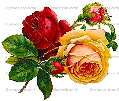 Möbel-Holz-Aufkleber, Motiv Vintage Antik Etiketten Rot Gelb Rose DIY