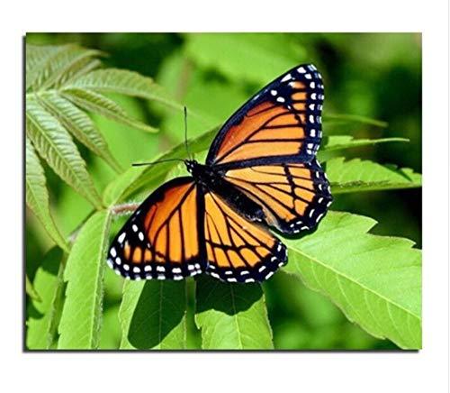 CYKEJISD Malen Nach Zahlen DIY DIY Schmetterlingsgrün Verlässt Geschenk Wanddekor DIY Malerei Auf Leinwand Für Wohnkultur (Zu Verlässt Thanksgiving)