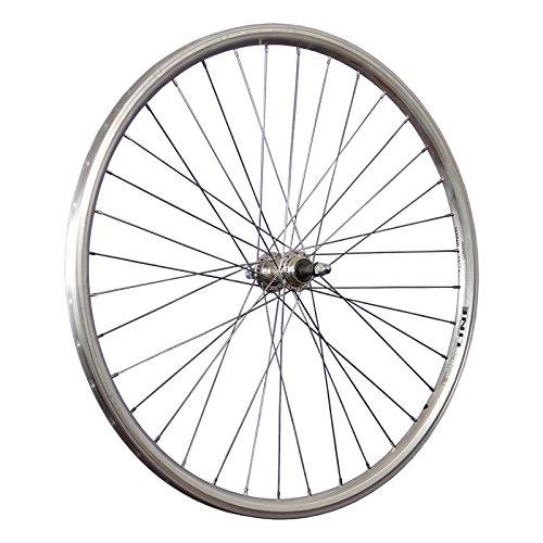 Taylor-Wheels 28 Zoll Hinterrad Schürmann Euroline für Schraubkranz - Silber