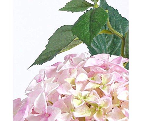 Künstliche Hortensie mit rosa- weißer Blütenkrone, 105cm – Kunstpflanze Kunstbaum künstliche Bäume Kunstbäume Gummibaum Kunstoffpflanzen Dekopflanzen Textilpflanzen