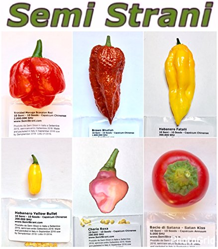 60 GRAINES de les 6 PIMENT CHILI PLUS PIQUANT et SAVOUREUX DU MONDE - COLLECTION 6 BIS: TRINIDAD MORUGA SCORPION RED, BROWN BHUTLAH, FATALII, CHEIRO ROXA, HABANERO YELLOW BULLET, SATAN'S KISS - LES FRUITS NE SONT PAS INCLUSES