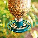 Parkland Vogelfutterstation für Flaschen–für Kunststoffflaschen, Futterspender für Wildvögel, 2Stück, 2er-Packung