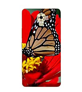 printtech Butterfly Flower Nature Back Case Cover for Gionee Marathon M6 Plus