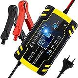 Chargeur de Batterie, BUDDYGO 12V 8Amp/24V 4Amp Booster Voiture Mainteneur Intelligent avce Écran LCD, Plusieurs Protections and 6 modes charge, pour Batterie de Voiture, Moto, Tondeuse à Gazon, Etc