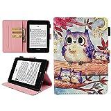 eBook Reader Hülle für Kindle Paperwhite