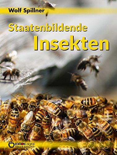 staatenbildende-insekten
