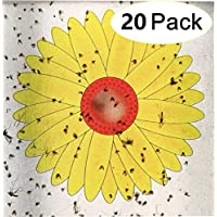 20PCS Floral Window Fly Stickers, Flies Sticker Trap for Indoor Insect Pest Attractor and Eliminator