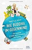 Wie Buddha im Gegenwind: Eine Kündigung, 22 Länder und ein besonderer Reisebegleiter -