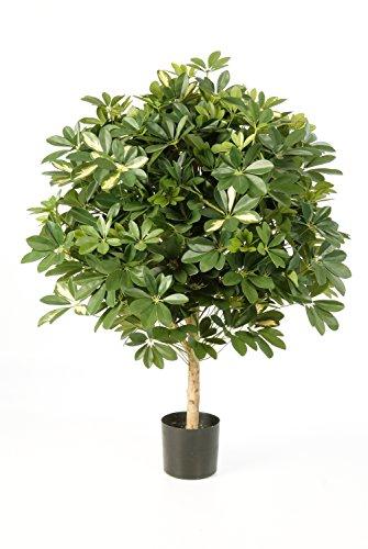 artplants – Künstliche Schefflera Kugel Anthony am Stamm, getopft, grün – weiß, 110 cm – Kleiner Deko Baum/Kunst Strahlenaralien Pflanze