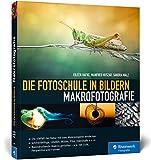 Die Fotoschule in Bildern. Makrofotografie: Die Vielfalt der Natur mit dem Makroobjektiv entdecken. Schmetterlinge, Libellen, Blüten, Pilze, ... - u.a. mit Licht, Perspektive und Formen