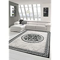 Traum Contemporary rug Design rug Oriental rug with glitter yarn Living room rug with border and creismate in gray anthracite cream size 120x160 cm