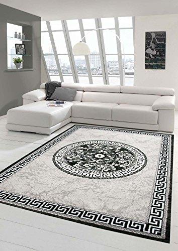 Moderner Teppich Designer Teppich Orientteppich mit Glitzergarn Wohnzimmer Teppich mit Bordüre und Kreismuster in Grau Anthrazit Creme Größe 160x220 cm